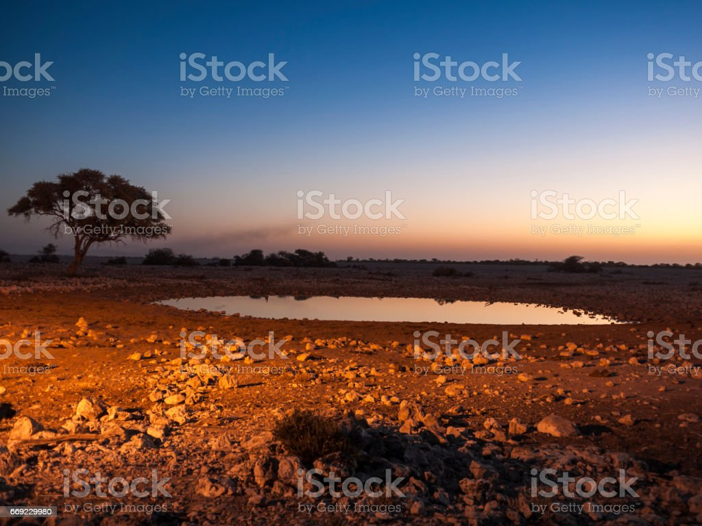 Waterhole stock photo