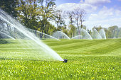watering a green grass against a blue sky background with clouds and trees