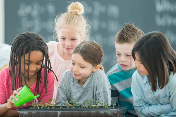 友達と小さな庭の水まき - 理科の授業 ストックフォトと画像