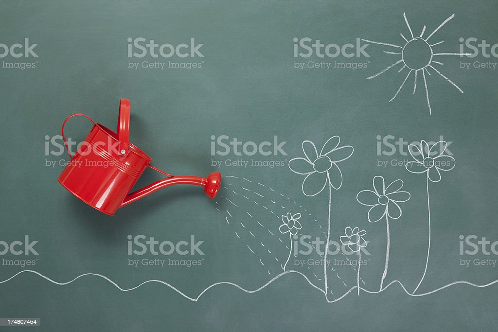 Watering can and flowers on blackboard stock photo