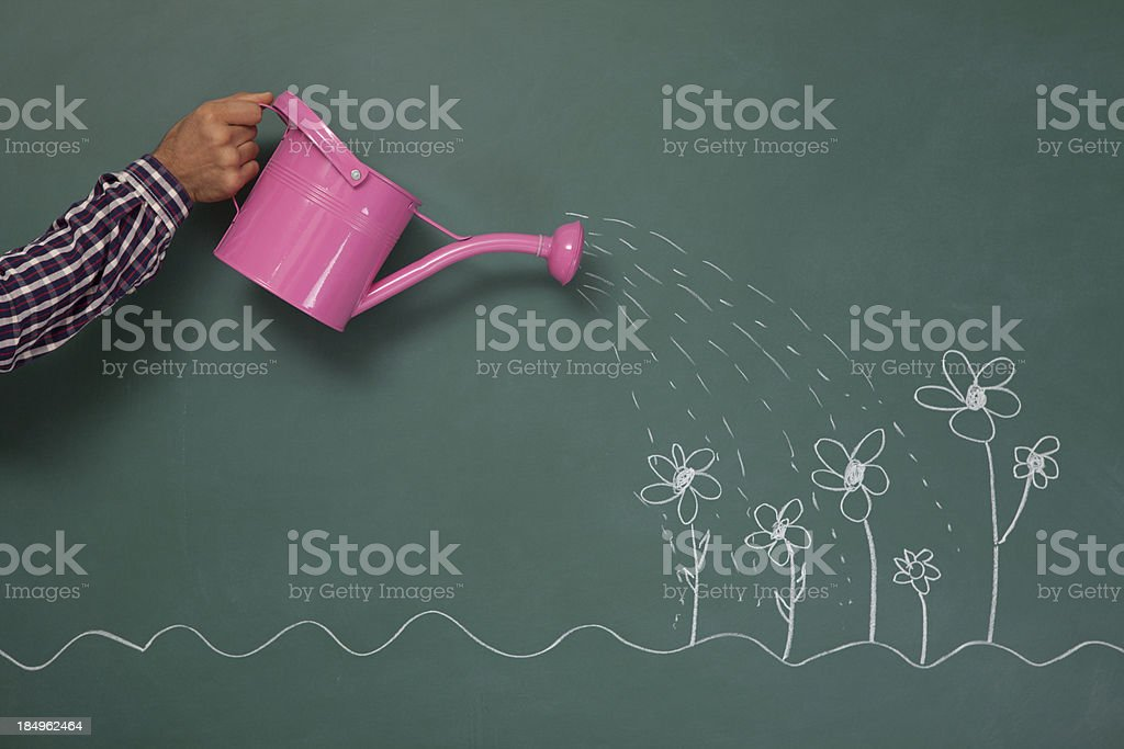 Watering can and flowers on blackboard royalty-free stock photo