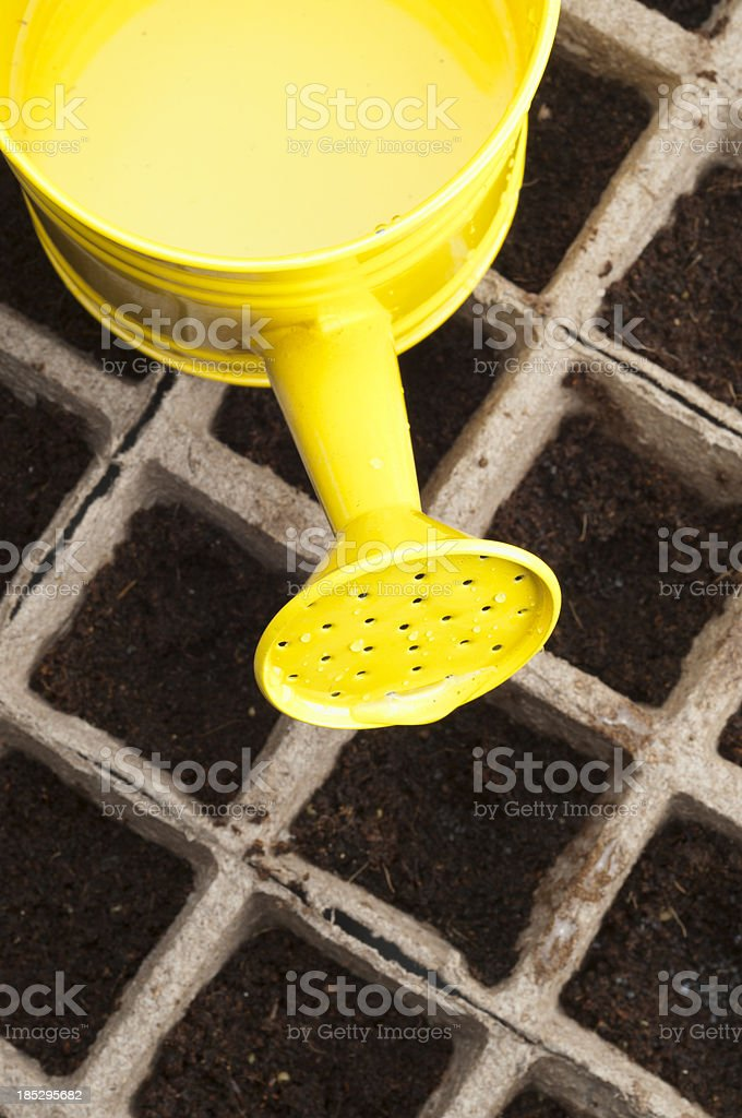 Watering Can and Seeds royalty-free stock photo