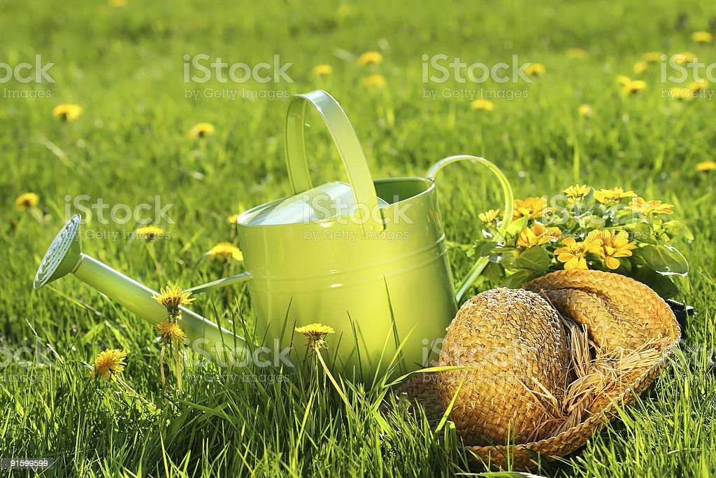Watering can in the grass royalty-free stock photo