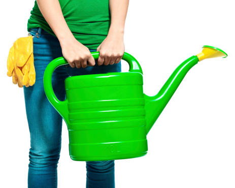 Watering Can Stock Photo - Download Image Now