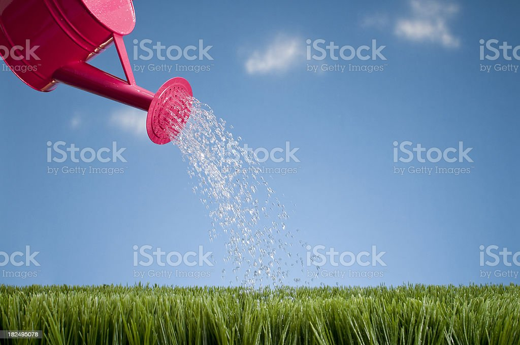 Watering Can Showering The Grass stock photo