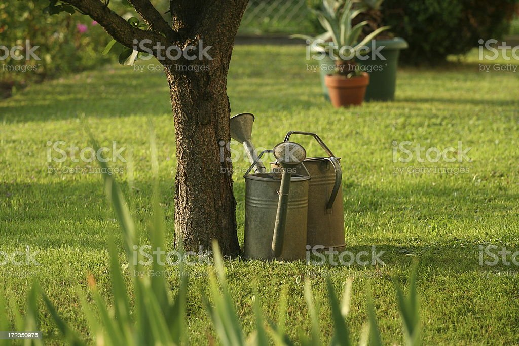 Watering cans under a tree royalty-free stock photo