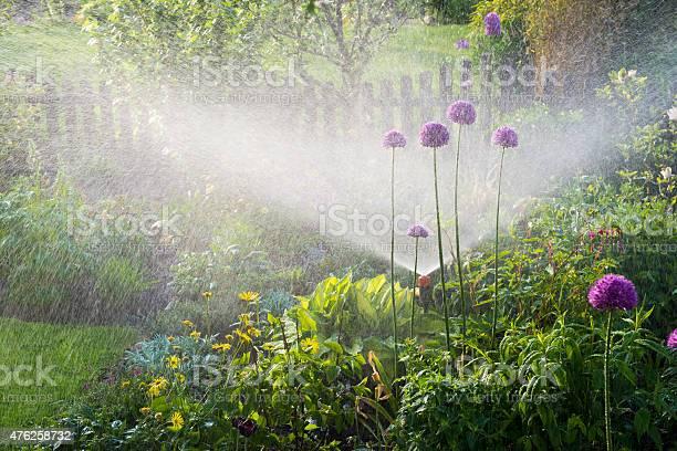 Gießen Blumenbeeten Stockfoto und mehr Bilder von 2015