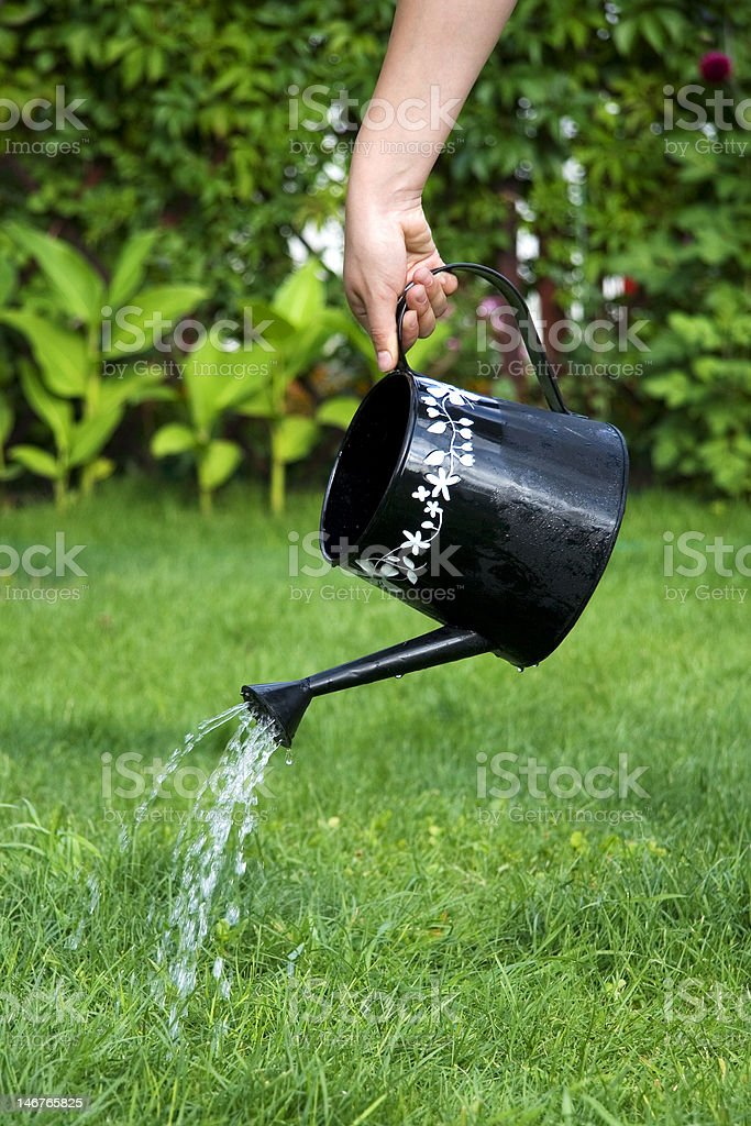 Watering hand royalty-free stock photo