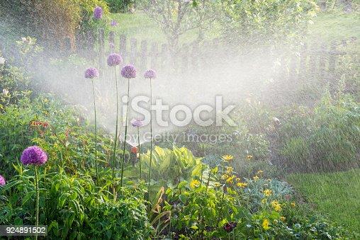Watering in the flower garden - gardeners in the flowerbed