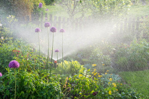 Watering in the flower garden Watering in the flower garden - gardeners in the flowerbed irrigation equipment stock pictures, royalty-free photos & images