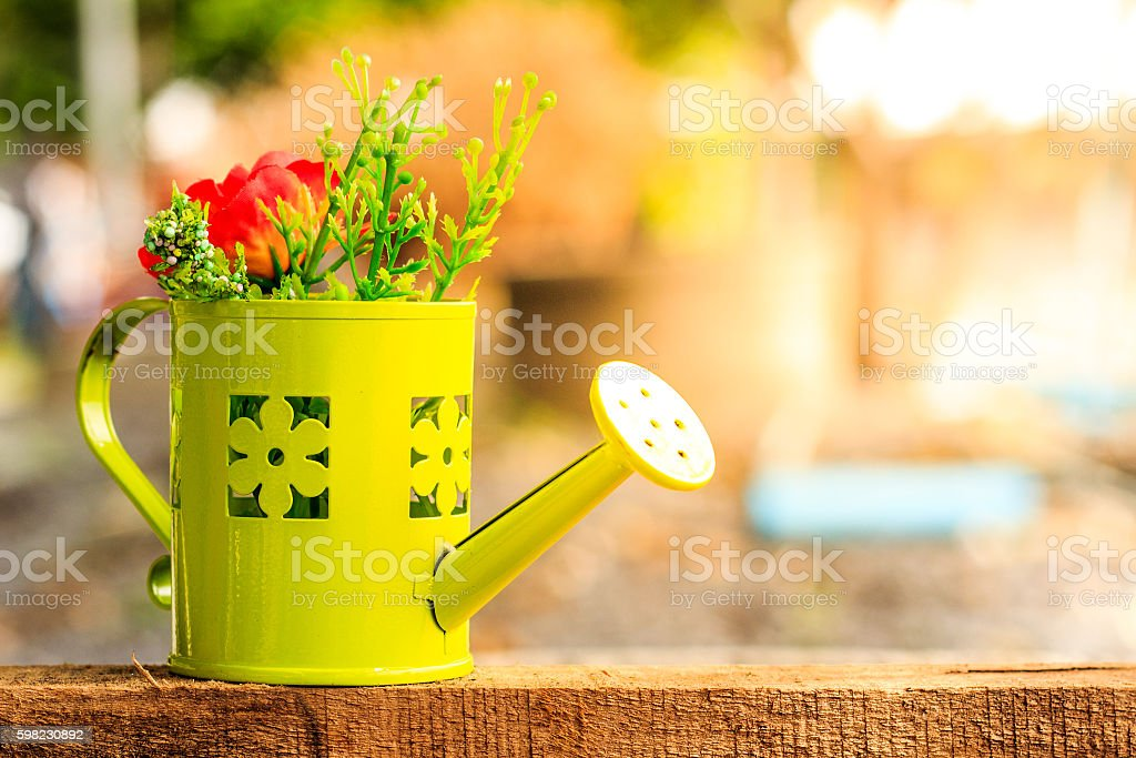 watering in the garden and evening light foto royalty-free