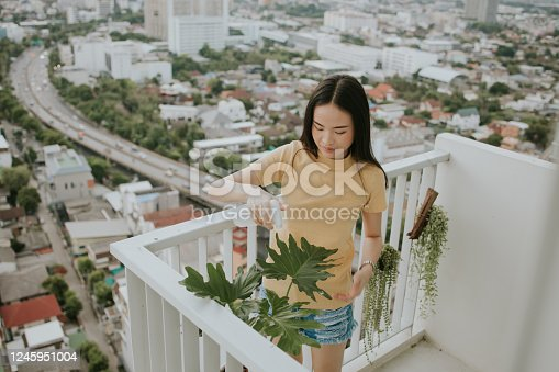 Portrait of beautiful Thai woman watering monstera tree at her apartment in the city, Bangkok Thailand