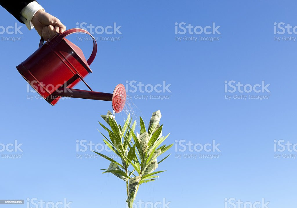 watering money growing on plant royalty-free stock photo