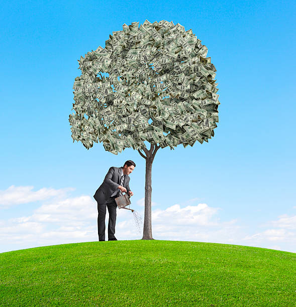Watering Money Tree A businessman watering a money tree. money tree stock pictures, royalty-free photos & images