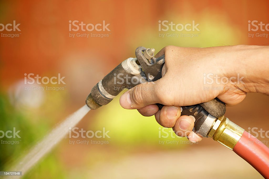 watering plants royalty-free stock photo
