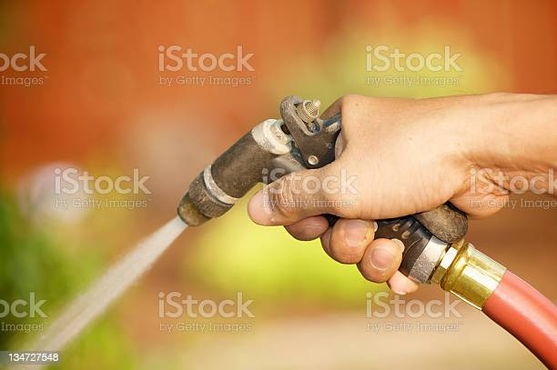 Watering Plants Stock Photo - Download Image Now