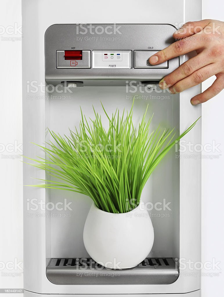 Watering potted plant royalty-free stock photo