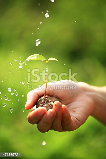 Close-up of hand holding a small plant under splash of water.