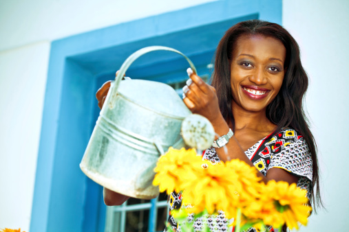 Watering The Flowers Stock Photo - Download Image Now