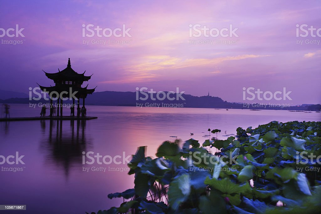 waterlily and temple with sunset stock photo