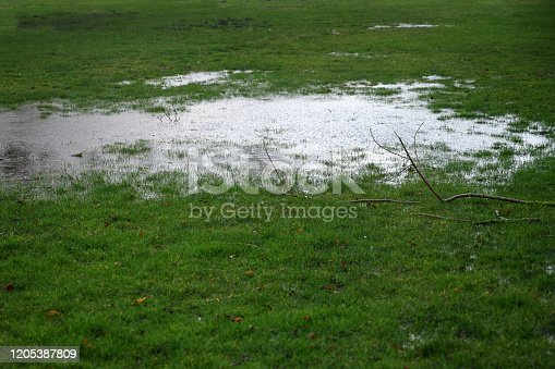 Waterlogged lawn with standing water in a large puddle and fallen branches after a heavy rain, copy space, selected focus