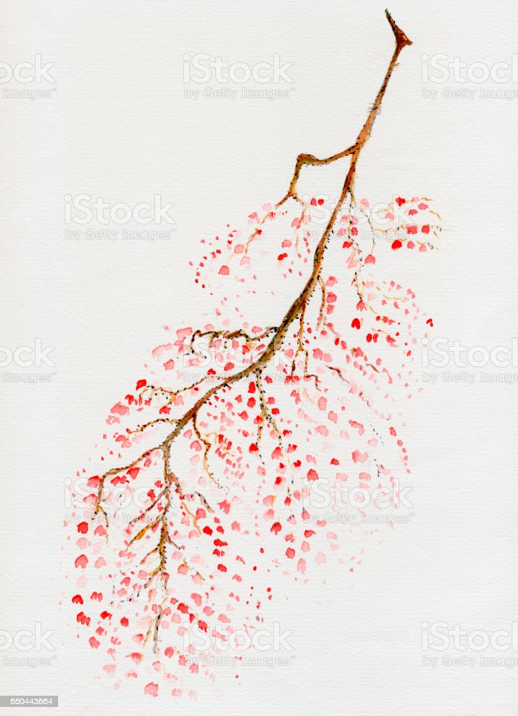 Waterloo tree branch with red leaves stock photo
