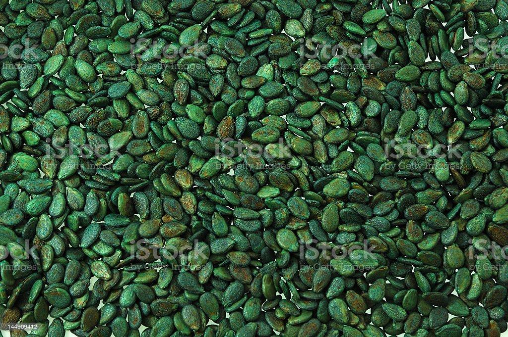 Watermelon Seed royalty-free stock photo