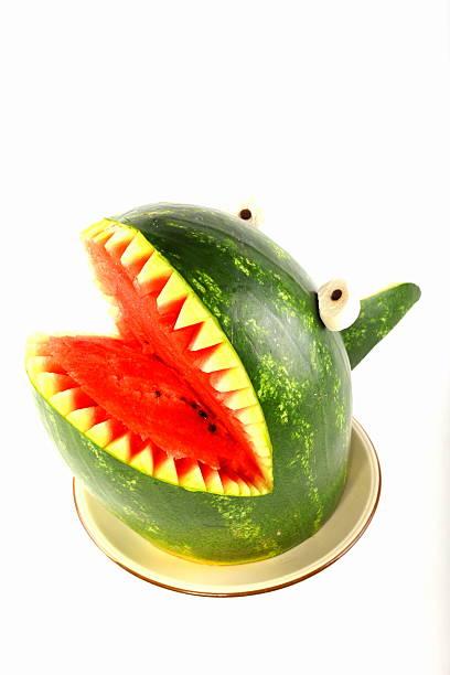wassermelone hai-isoliert - melonen hai stock-fotos und bilder