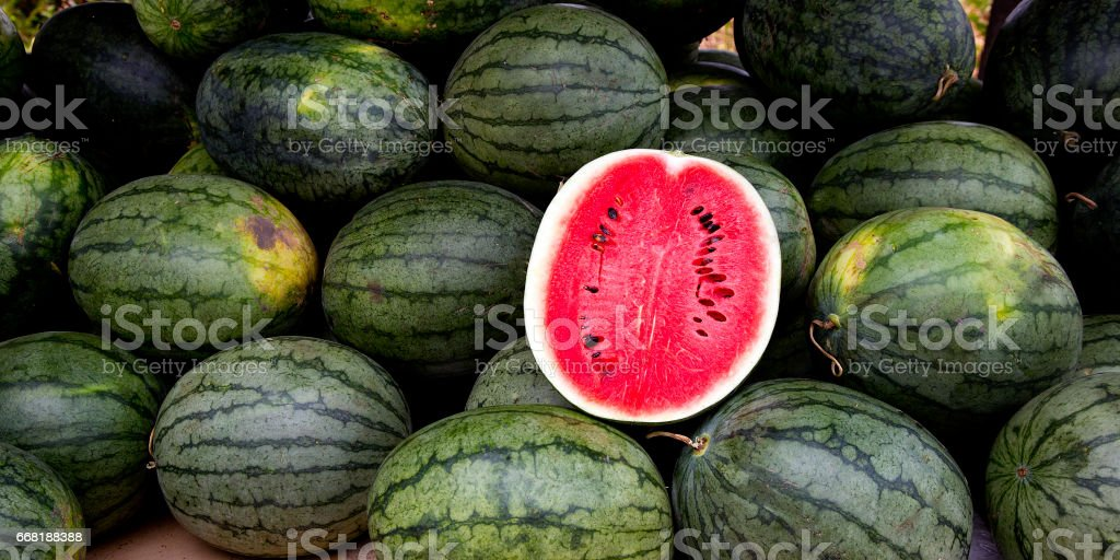 watermelon slice.Many big sweet green watermelons and one cut watermelon. stock photo