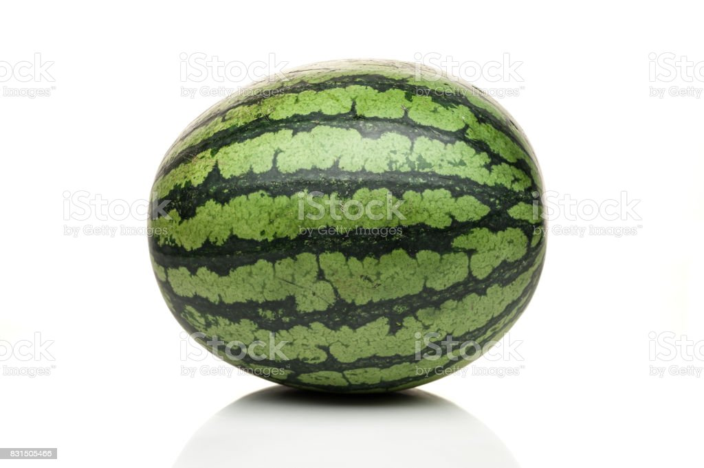 watermelon standing isolated on white background stock photo