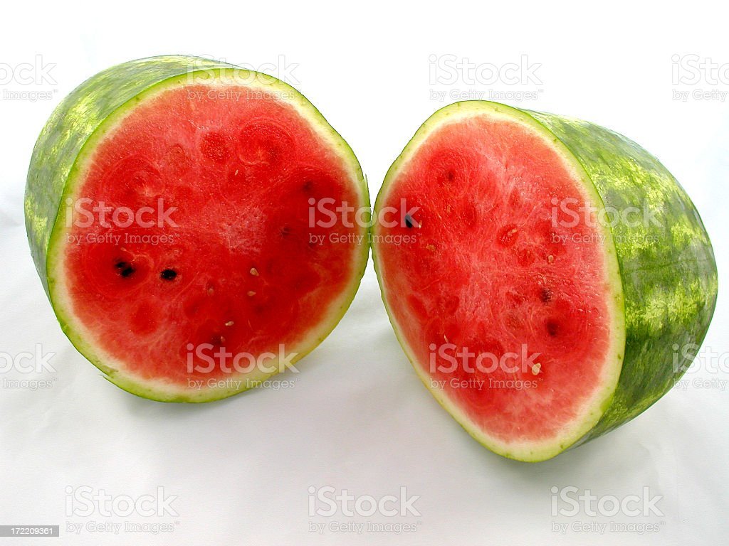 watermelon study royalty-free stock photo