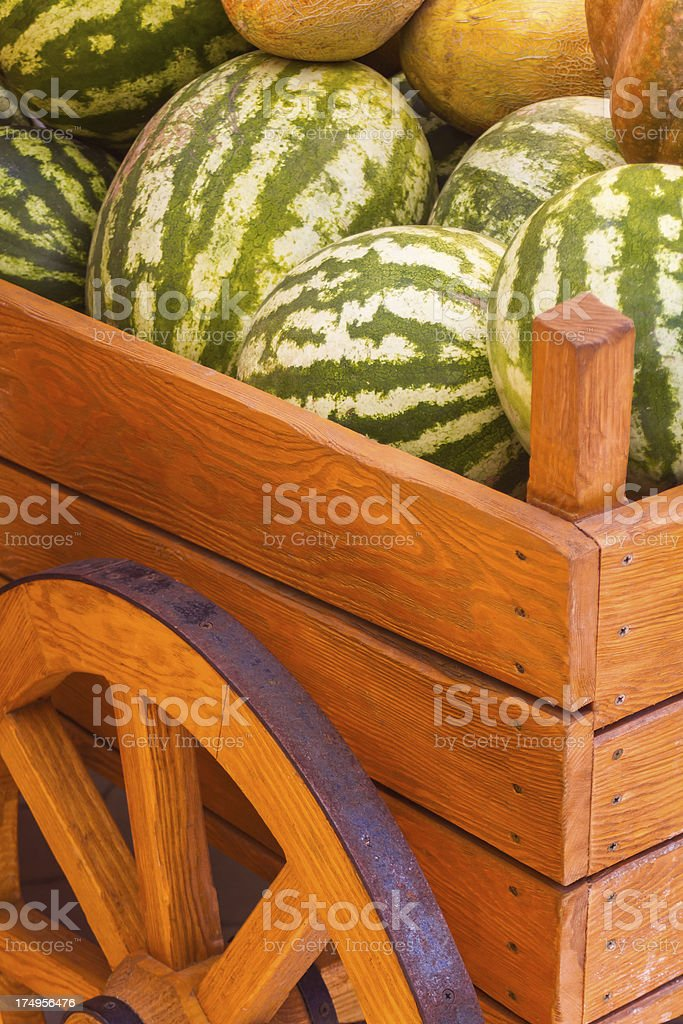 Watermelons and melons royalty-free stock photo