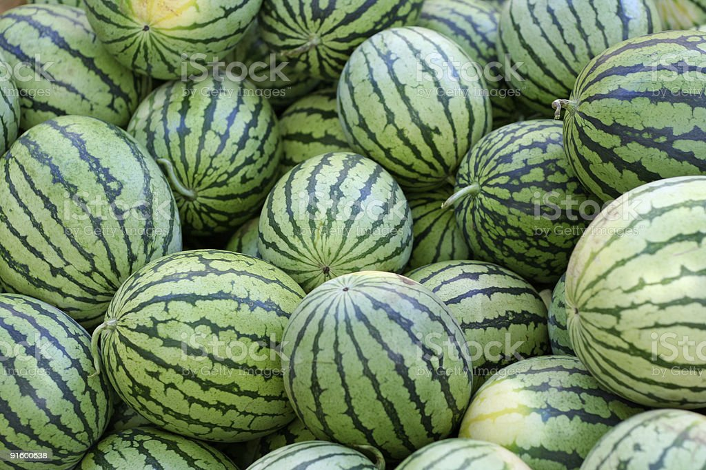 Watermelons on Display at the Farmer's Market royalty-free stock photo
