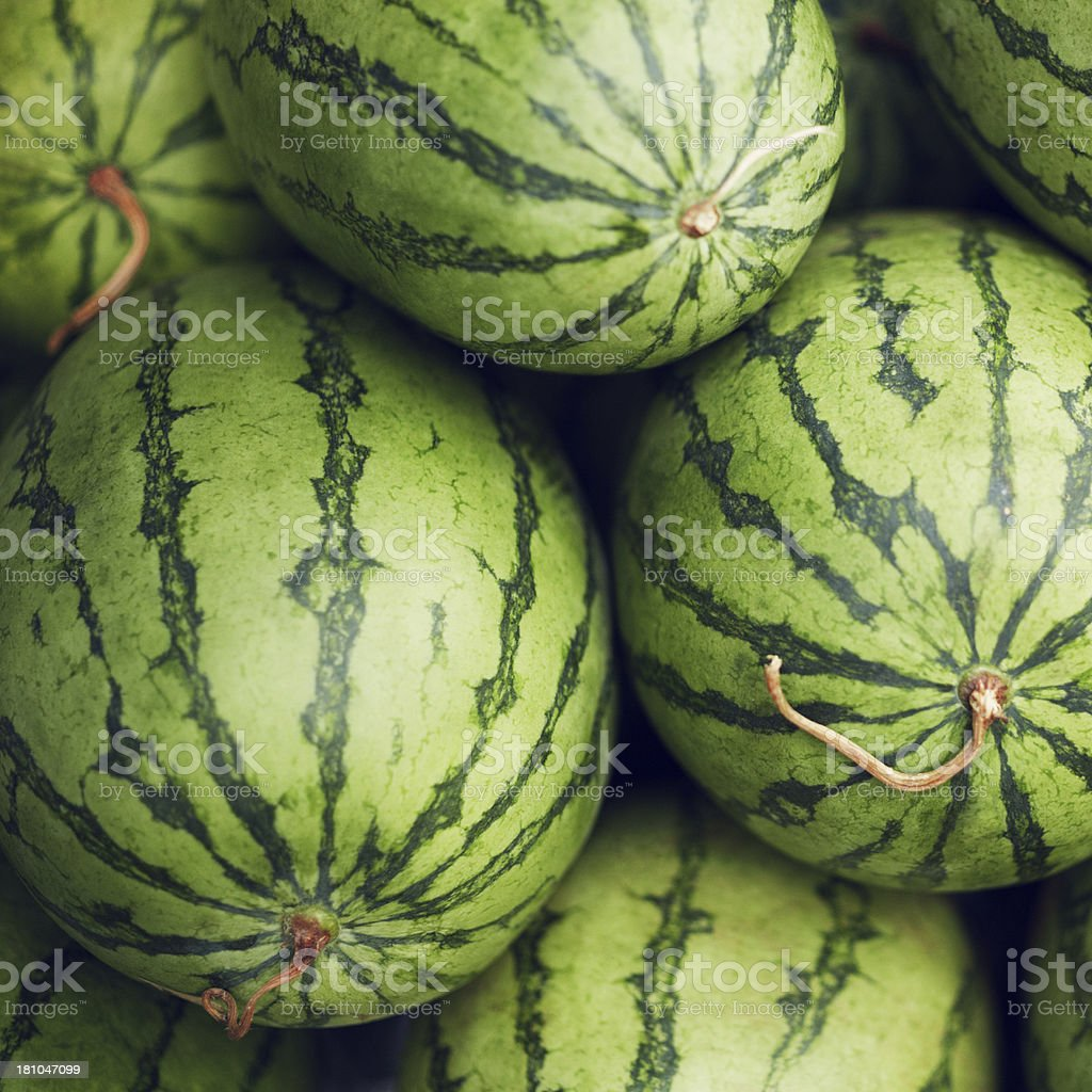 Watermelons stock photo