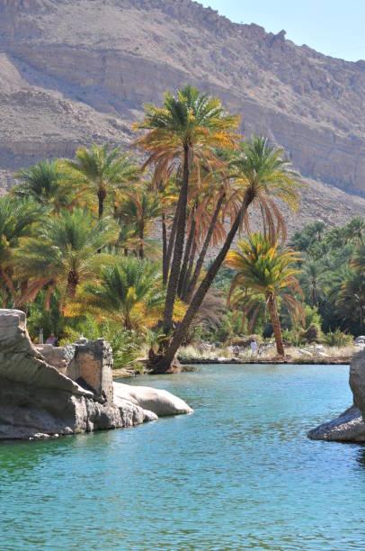 Wasserbecken in Wadi Bani Khalid, Oman – Foto
