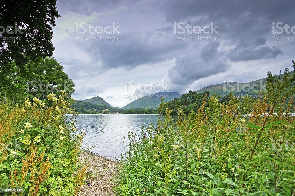 Waters edge Grasmere lake royalty-free stock photo