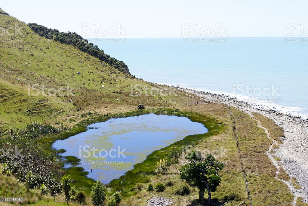 Waterscape, Cable Bay, Nelson, New Zealand royalty-free stock photo
