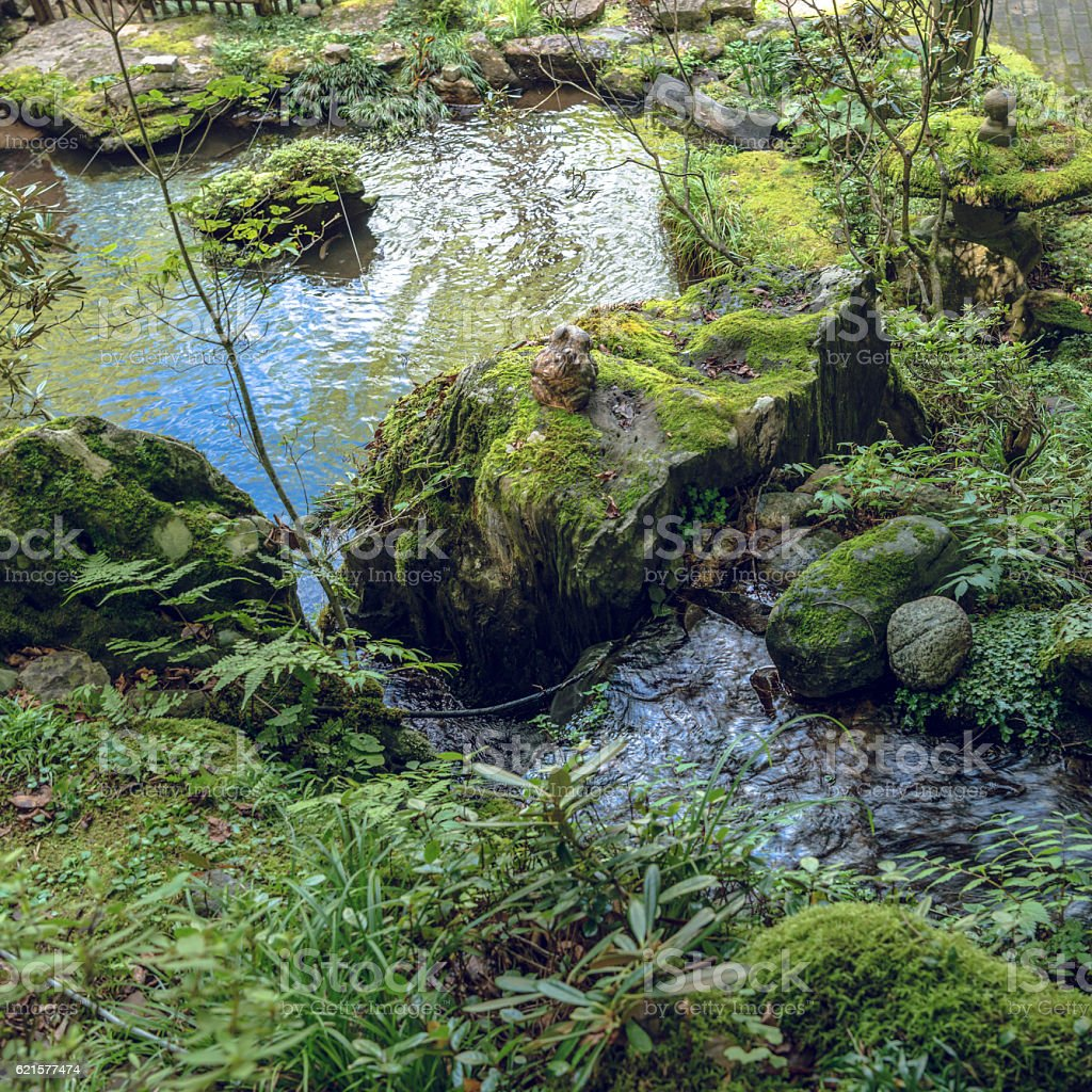 Waterside of the Japanese garden stock photo