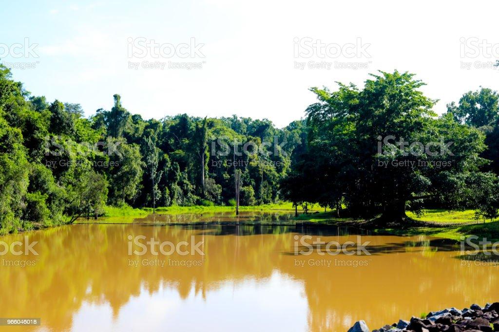 aan het water omgeving bij Chulabhorn Dam, Chaiyaphum THAILAND - Royalty-free Azië Stockfoto