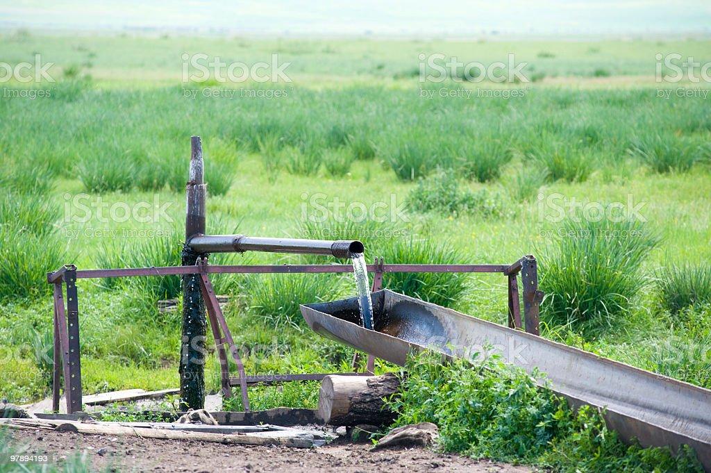 watertrough royalty-free stock photo