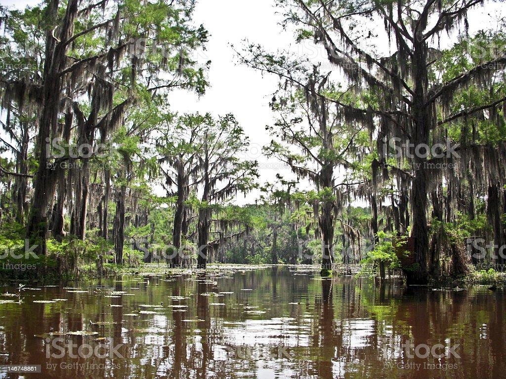 Waterway in Caddo royalty-free stock photo