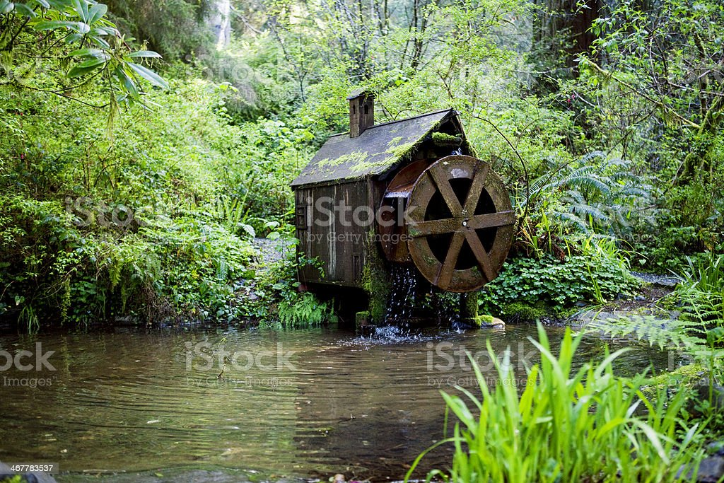 Waterwheel in the Forest stock photo