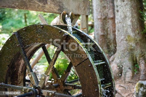 A water wheel in a forest