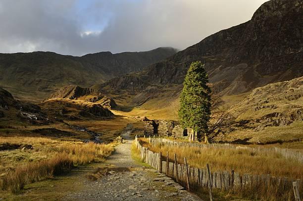 watkin path leading up snowdon - caernarfon and merionethshire stockfoto's en -beelden
