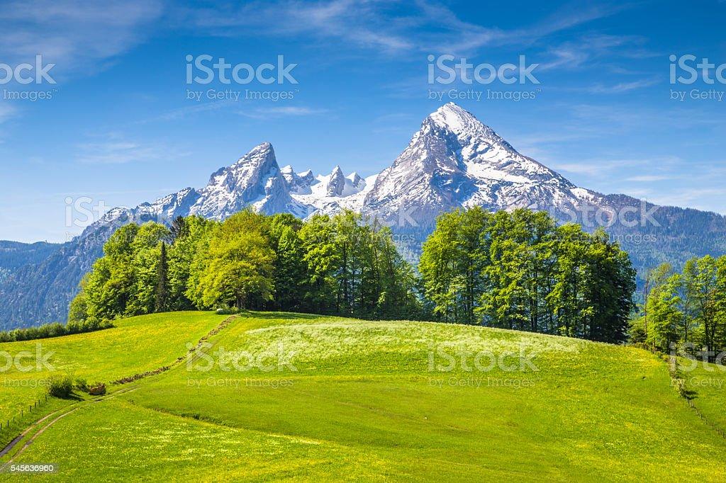 Watzmann mountain with green meadows in springtime stock photo