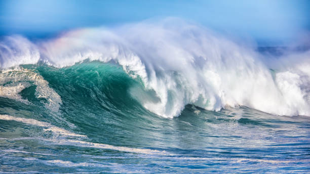wave in pacific ocean - wave stock photos and pictures