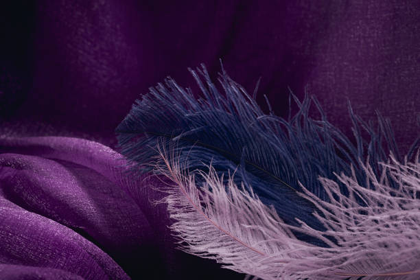 wave of elegant violet textile texture with fine pink and blue feathers. - hair line surface stock photos and pictures