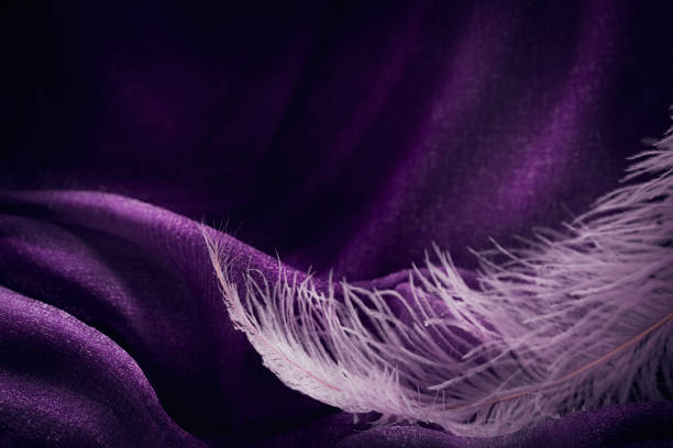 wave of elegant violet textile texture with fine pink feather. - hair line surface stock photos and pictures