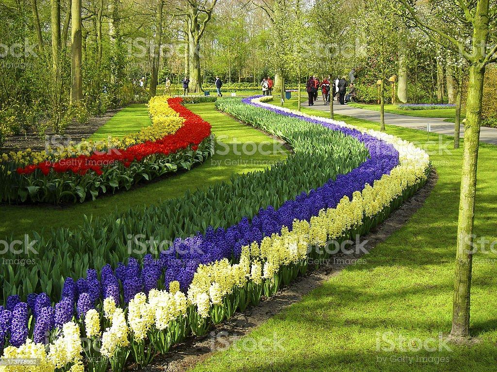Wave Of Flowers In Keukenhof Gardens Lisse Netherlands stock photo