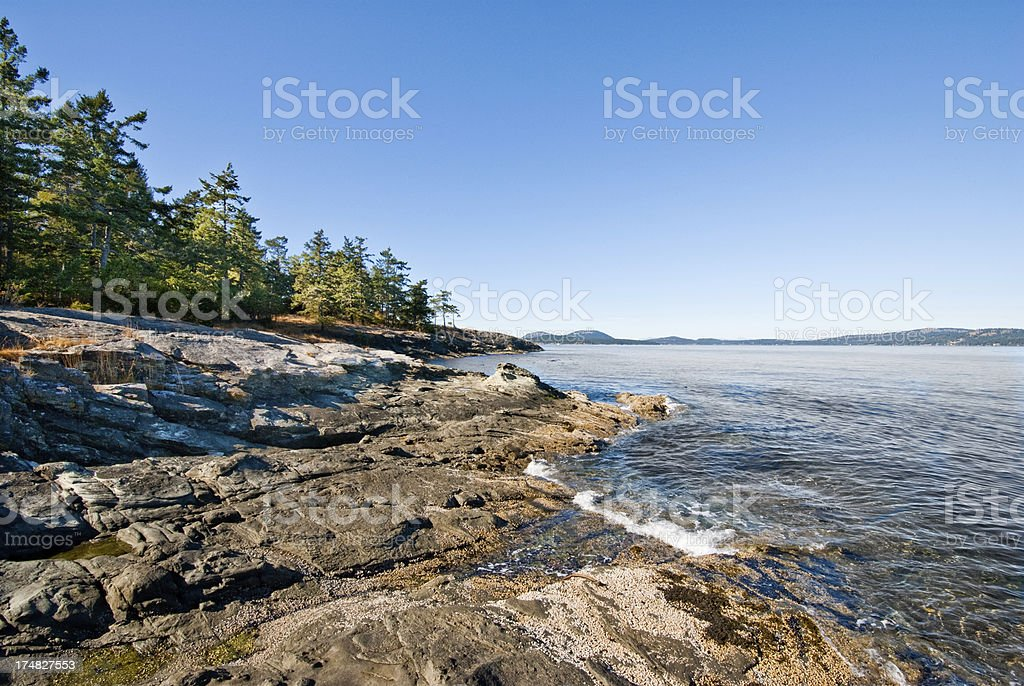 Wave Sculpted Rocks on the Strait of Georgia royalty-free stock photo